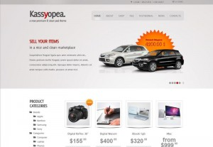 Theme Kassyopea (ThemeForest)