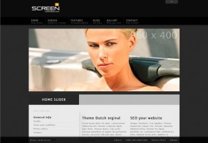 Thème Screen (ThemeForest)
